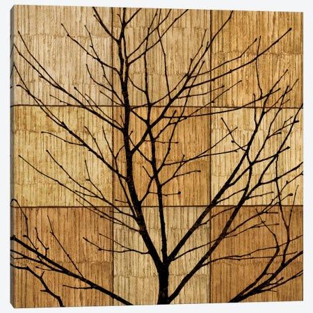 Tree Silhouette II Canvas Print #DON165} by Chris Donovan Art Print