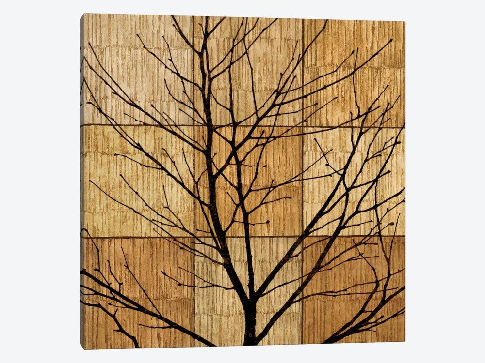 Tree Silhouette II by Chris Donovan 1-piece Canvas Art