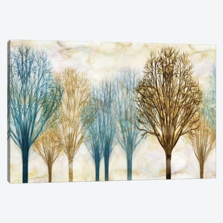 Treelined Canvas Print #DON166} by Chris Donovan Canvas Art Print
