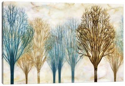 Treelined Canvas Art Print