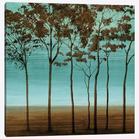 Azure II Canvas Print #DON16} by Chris Donovan Canvas Print