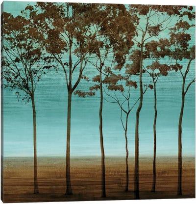 Azure II Canvas Art Print
