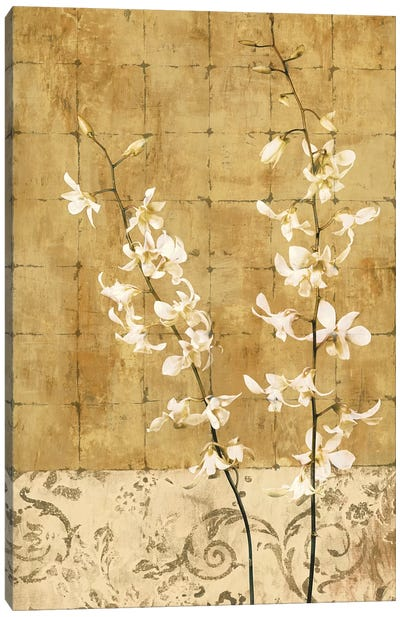Blossoms In Gold I Canvas Art Print
