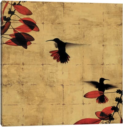 Colibri I Canvas Print #DON37