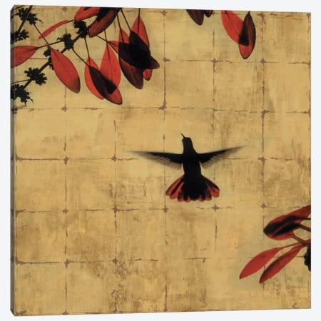 Colibri II Canvas Print #DON38} by Chris Donovan Canvas Artwork