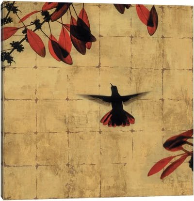 Colibri II Canvas Art Print