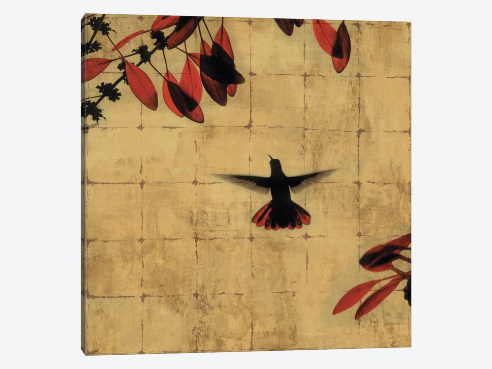 Colibri II by Chris Donovan 1-piece Canvas Wall Art
