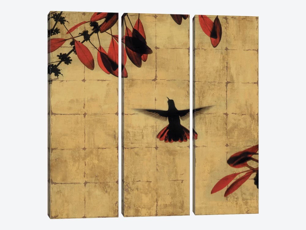 Colibri II by Chris Donovan 3-piece Canvas Wall Art