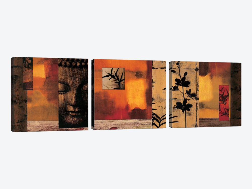Dharma I by Chris Donovan 3-piece Canvas Wall Art