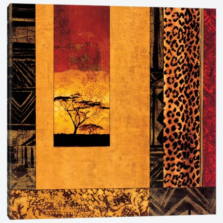 African Studies I Canvas Print #DON4} by Chris Donovan Canvas Wall Art