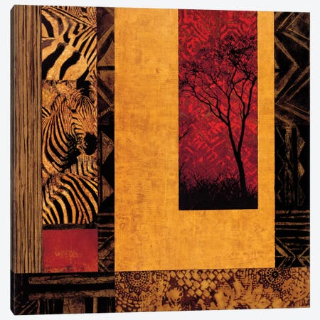 African Studies II Canvas Print #DON5} by Chris Donovan Canvas Artwork