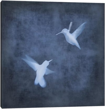 Flight In Blue I Canvas Art Print
