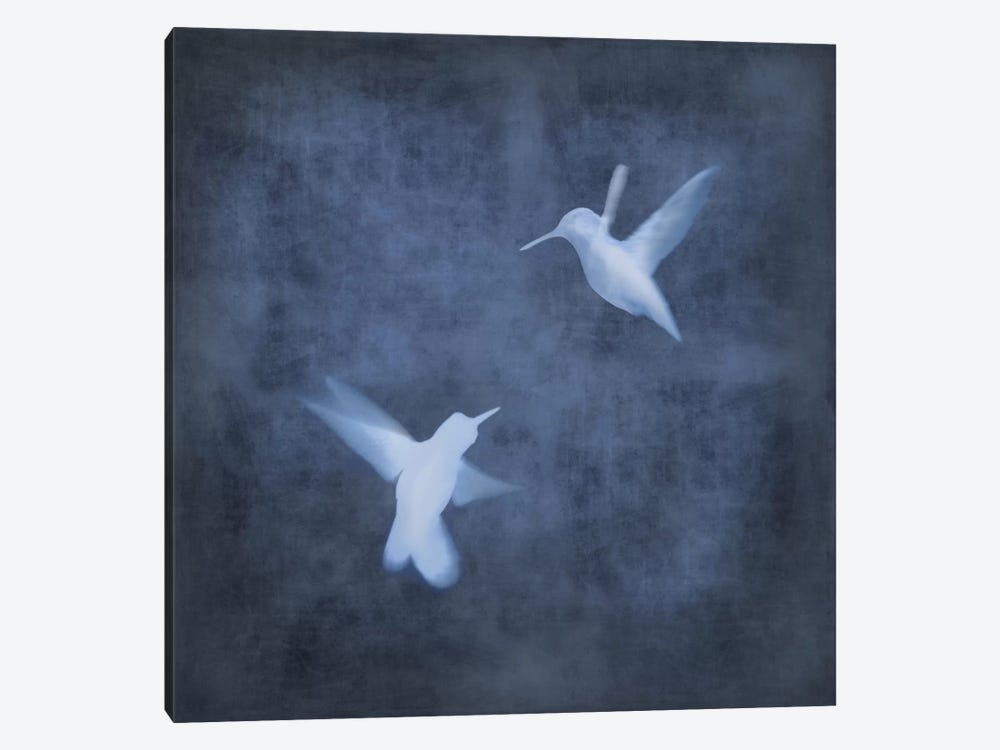 Flight In Blue I by Chris Donovan 1-piece Canvas Print