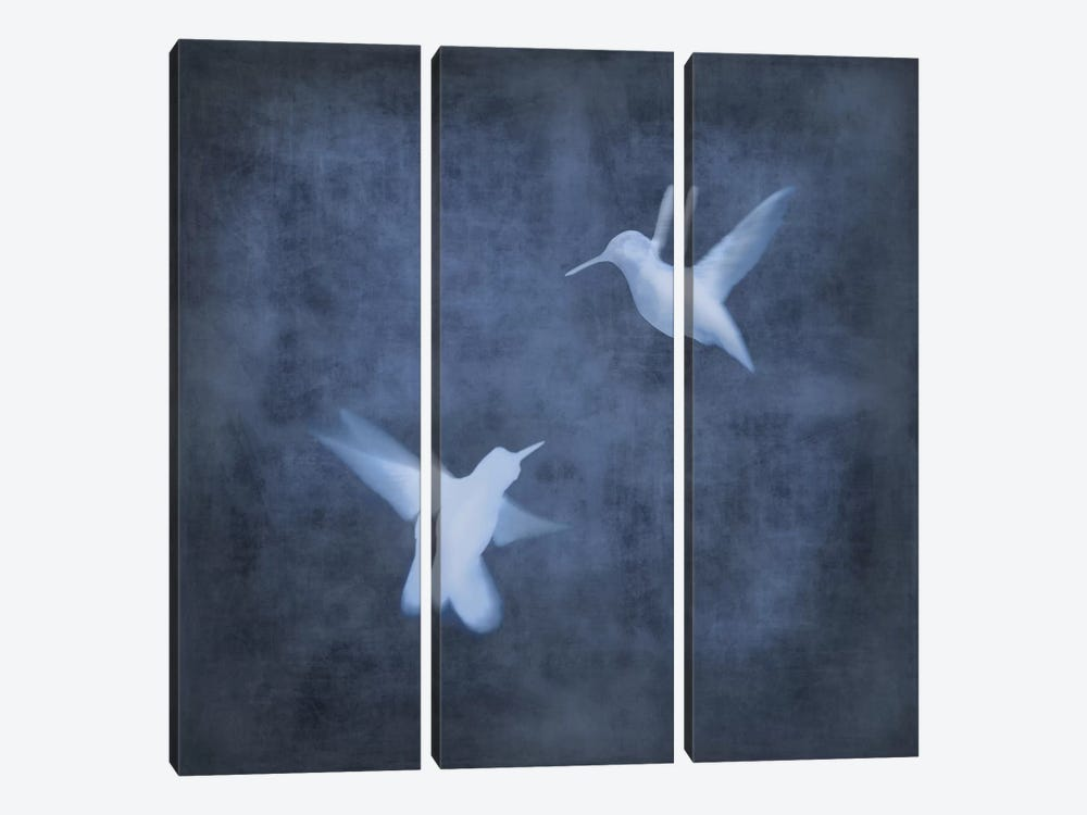 Flight In Blue I by Chris Donovan 3-piece Canvas Print