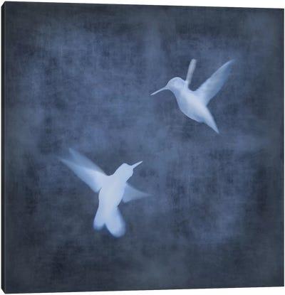 Flight In Blue I Canvas Art Print