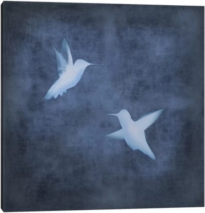 Flight In Blue II Canvas Art Print