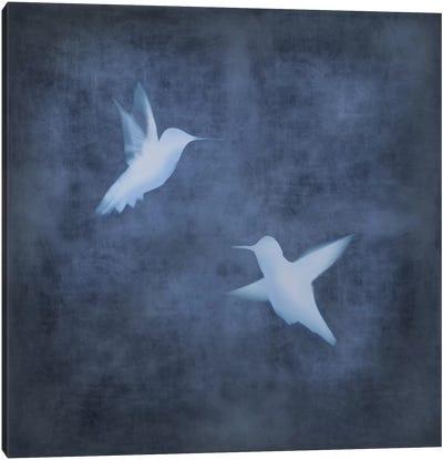 Flight In Blue II Canvas Art Print