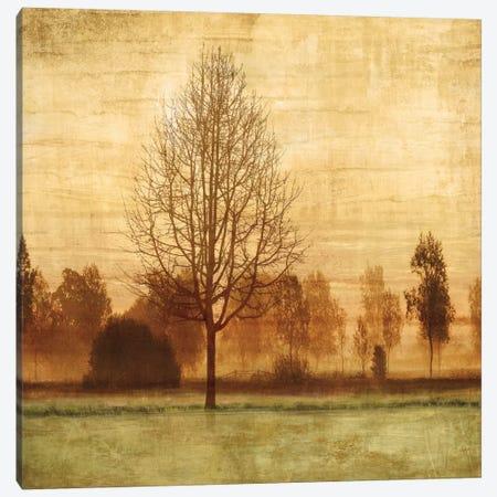 Golden Sunrise II Canvas Print #DON69} by Chris Donovan Canvas Art Print