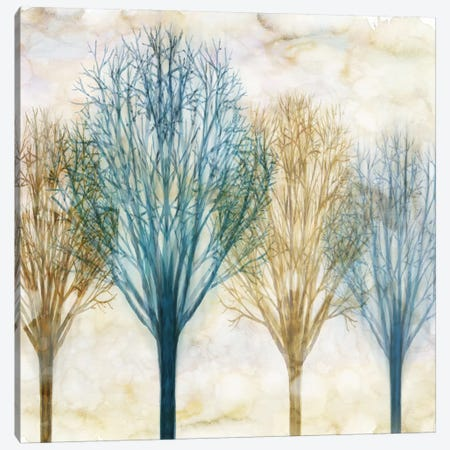 Among The Trees I Canvas Print #DON8} by Chris Donovan Art Print