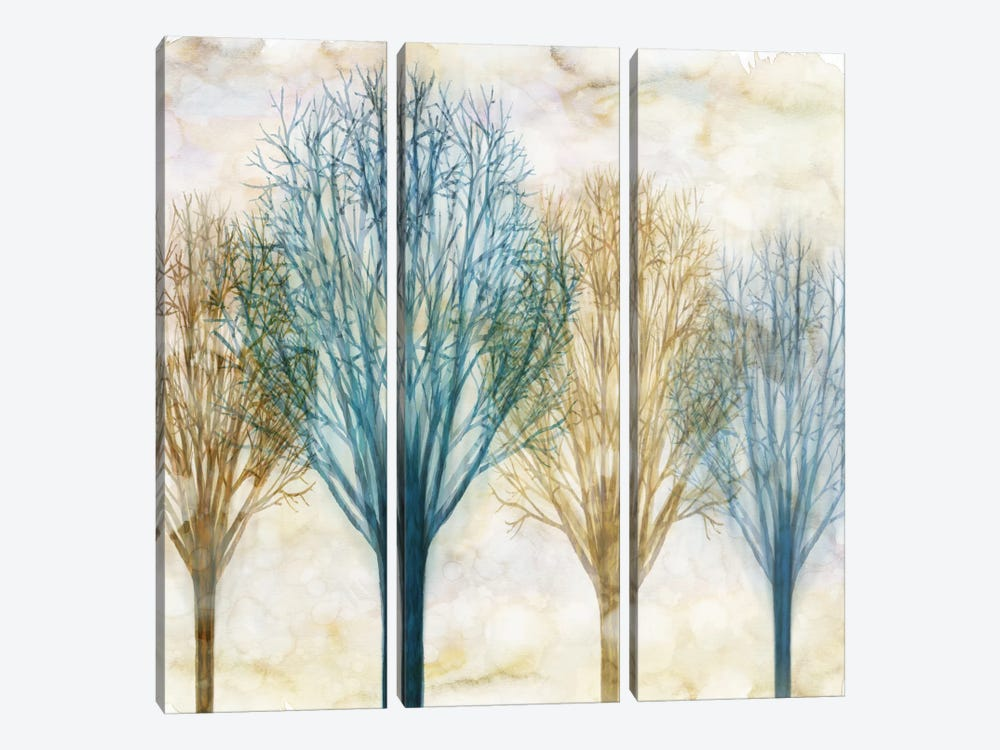 Among The Trees I by Chris Donovan 3-piece Canvas Print