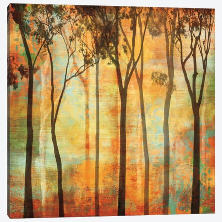 Magical Forest I Canvas Print #DON99} by Chris Donovan Canvas Wall Art