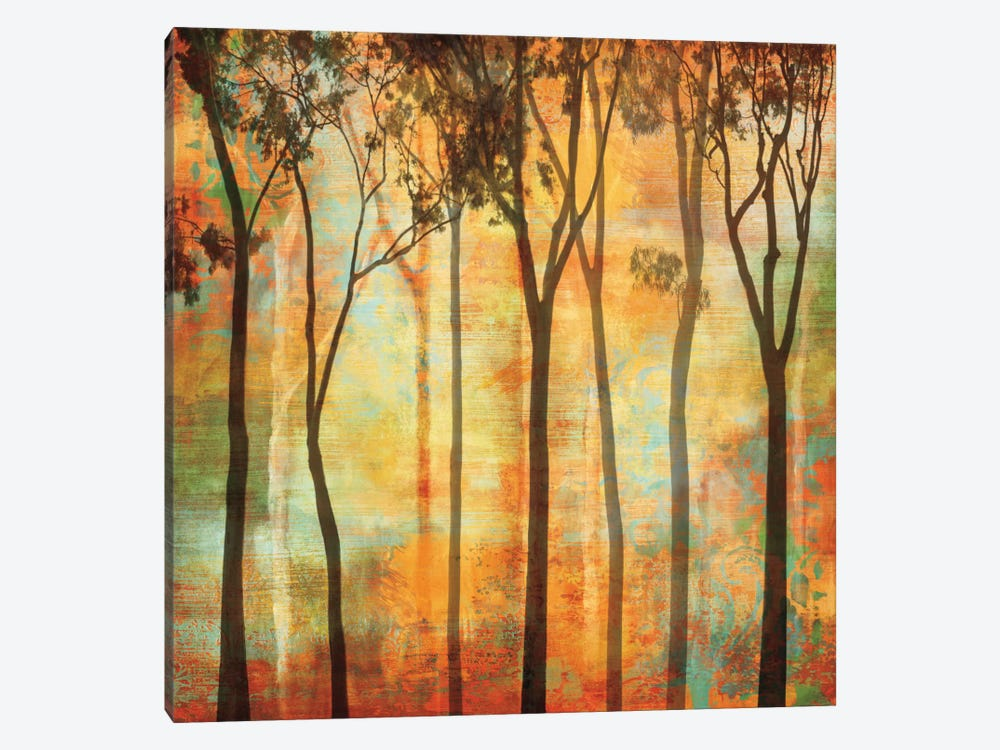 Magical Forest I by Chris Donovan 1-piece Canvas Print