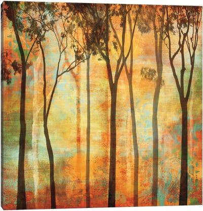 Magical Forest I Canvas Art Print