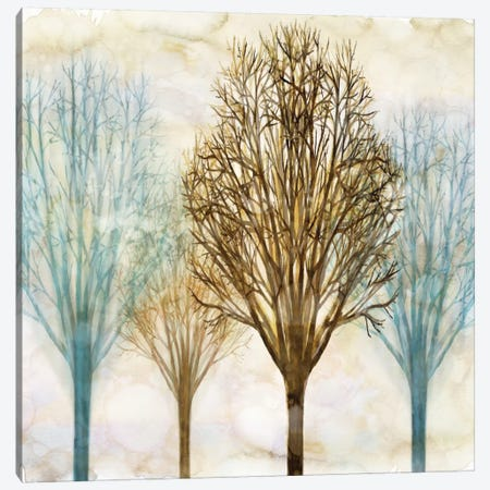 Among The Trees II Canvas Print #DON9} by Chris Donovan Canvas Art Print