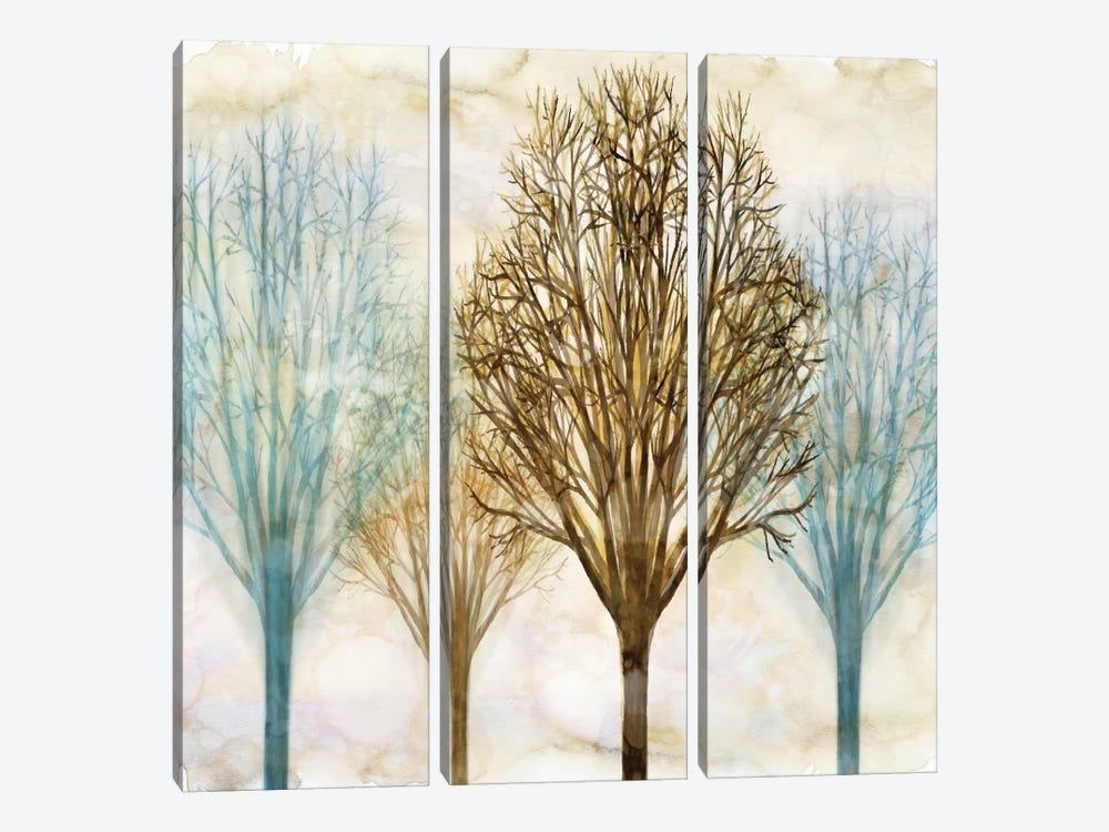 Among The Trees II by Chris Donovan 3-piece Canvas Art