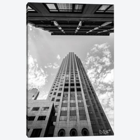 Looking Up Canvas Print #DOQ9} by Donnie Quillen Canvas Print