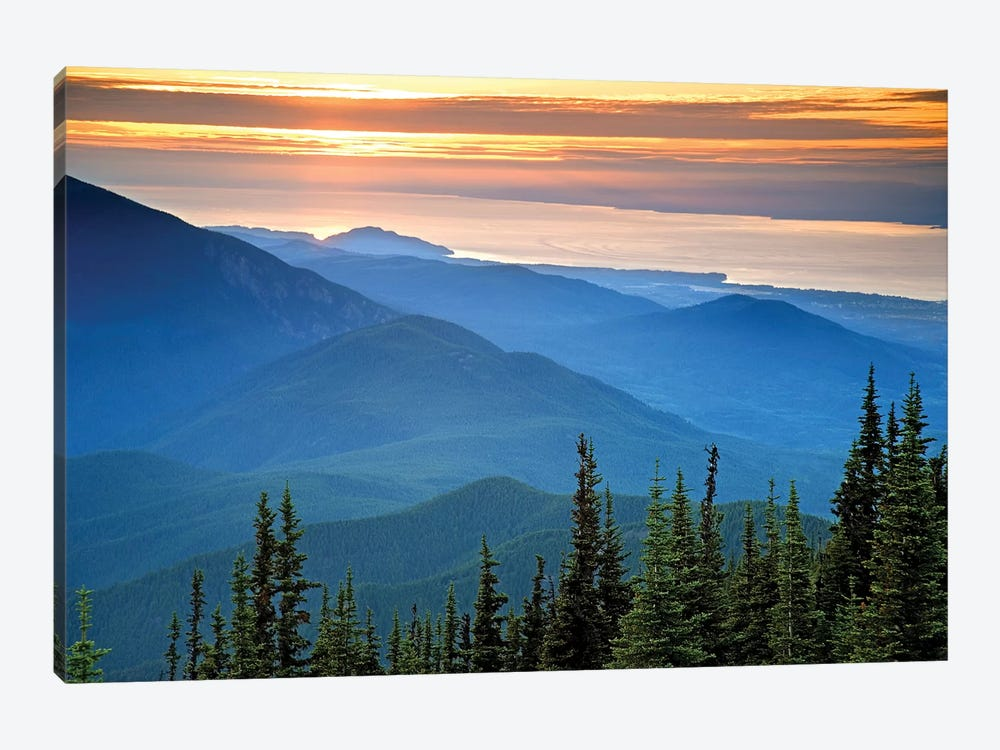 Coastal Landscape At Sunset, Olympic National Park, Washington, USA by Don Paulson 1-piece Canvas Art Print