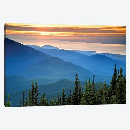 Coastal Landscape At Sunset, Olympic National Park, Washington, USA Canvas Print #DPA14} by Don Paulson Canvas Print