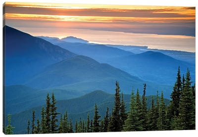 Coastal Landscape At Sunset, Olympic National Park, Washington, USA Canvas Art Print