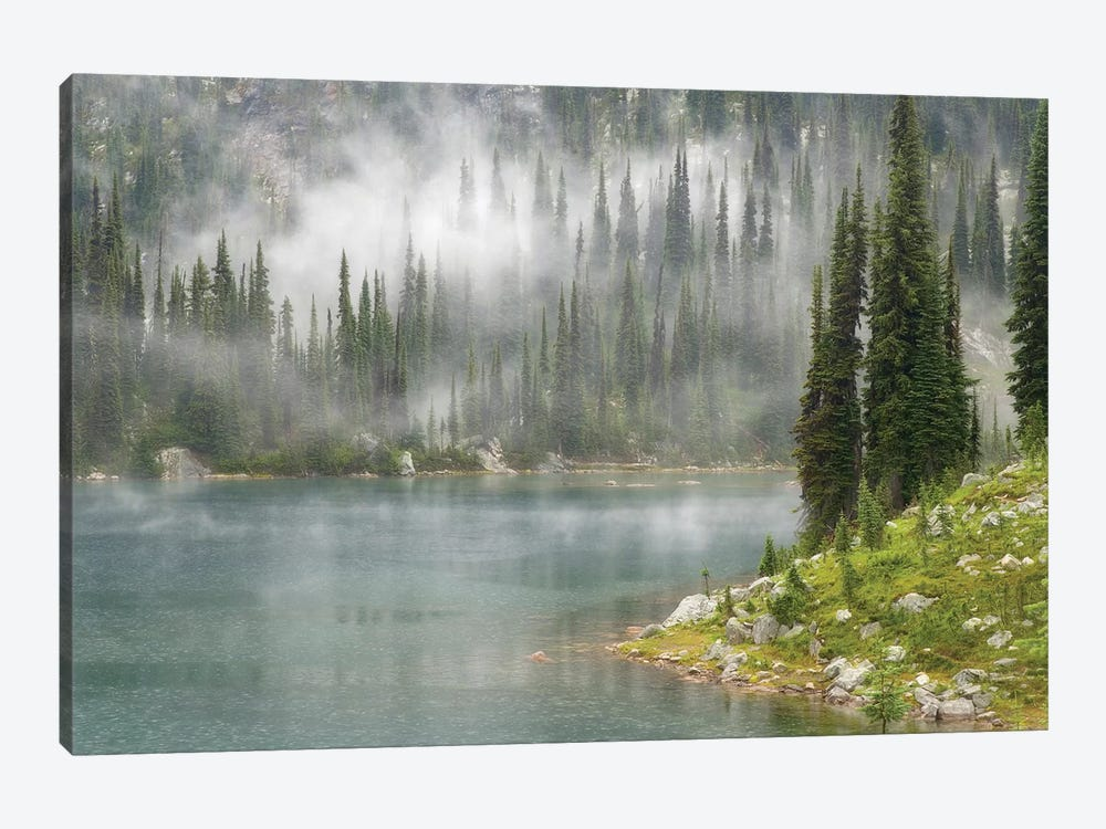 Fog & Rain Over Eva Lake, Mount Revelstoke National Park, British Columbia, Canada by Don Paulson 1-piece Canvas Artwork