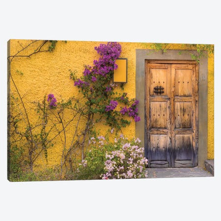 Bougainvillea Next To A Wooden Door, San Miguel de Allende, Guanajuato, Mexico Canvas Print #DPA5} by Don Paulson Canvas Wall Art