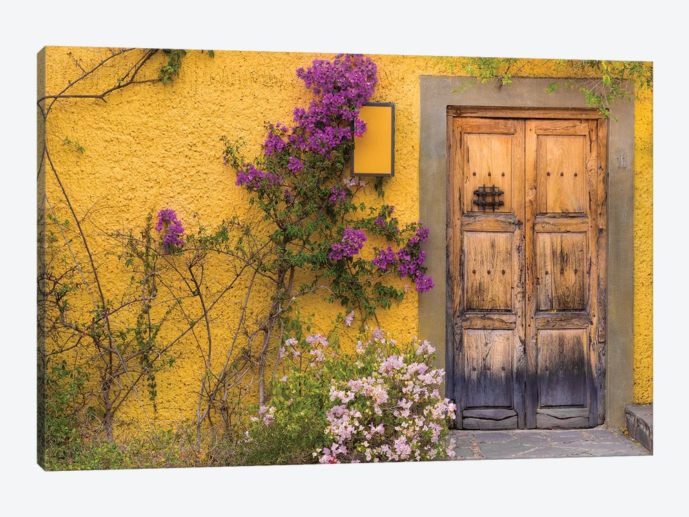 Bougainvillea Next To A Wooden Door, San Miguel de Allende, Guanajuato, Mexico 1-piece Canvas Wall Art