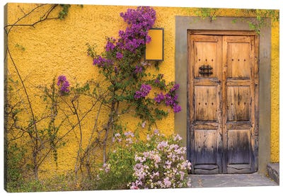 Bougainvillea Next To A Wooden Door, San Miguel de Allende, Guanajuato, Mexico Canvas Art Print