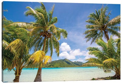 Snorkeling and lunch on Motu Marimaora, Huahine, French Polynesia Canvas Art Print
