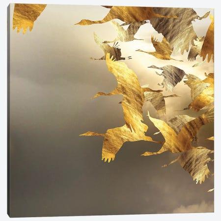 Airborne Spiral I Canvas Print #DPH3} by Daphne Horev Canvas Art