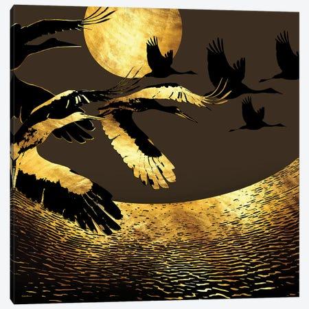 Sleepless Nights Canvas Print #DPH43} by Daphne Horev Canvas Art