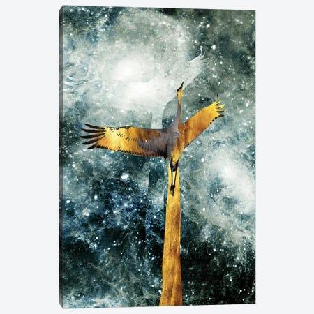 Solo Flight Canvas Print #DPH45} by Daphne Horev Canvas Art Print