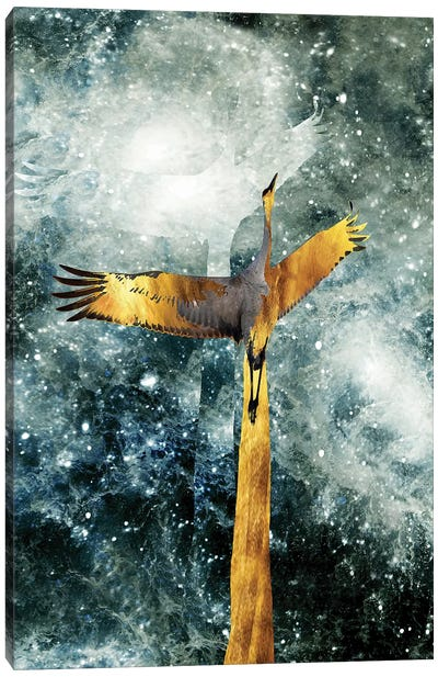 Solo Flight Canvas Art Print
