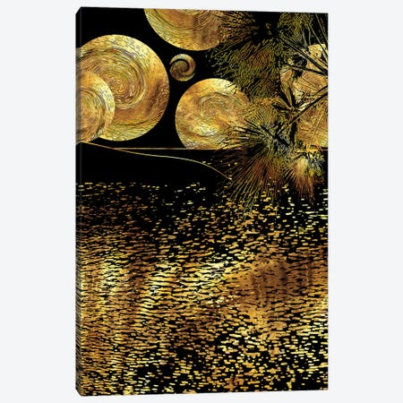 Starry Night Canvas Print #DPH46} by Daphne Horev Canvas Print