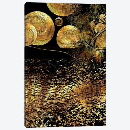 Starry Night Canvas Print #DPH46} by Daphne Horev Canvas Print