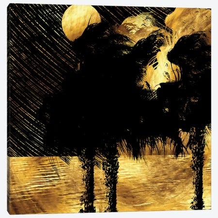 Tropical Rainy Night Canvas Print #DPH49} by Daphne Horev Canvas Artwork