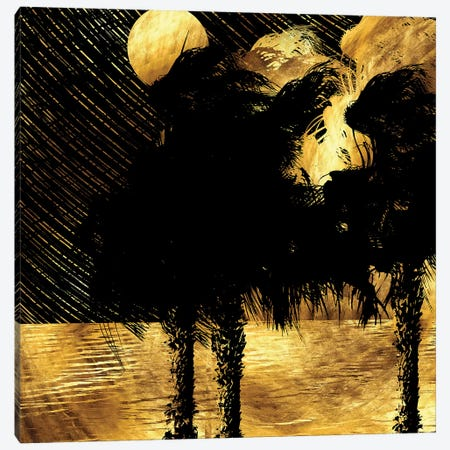 Tropical Rainy Night Canvas Print #DPH49} by Daphne Horev Canvas Artwork