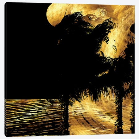 Tropical Windy Night Canvas Print #DPH51} by Daphne Horev Canvas Print