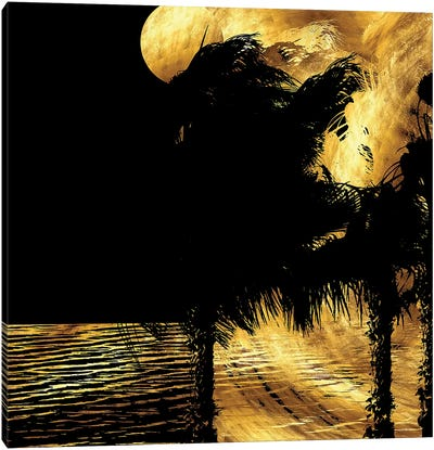 Tropical Windy Night Canvas Art Print