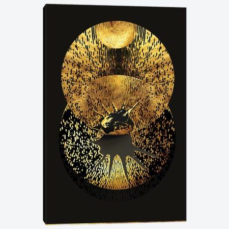 Haiku No.19 Rising Star Canvas Print #DPH62} by Daphne Horev Canvas Wall Art
