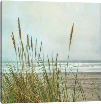 North Coast Dunes II Canvas Art Print